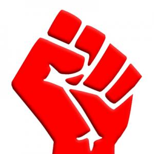 Socialism-Fist