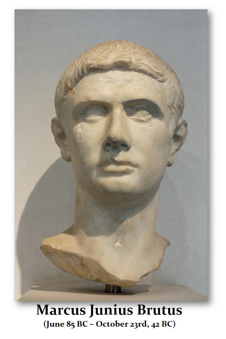 Brutus-Bust
