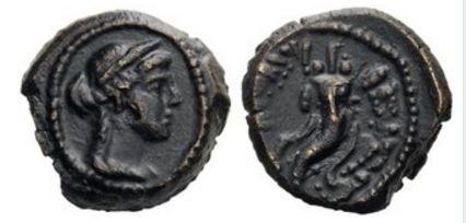 Arsinoe III AE Chalkous