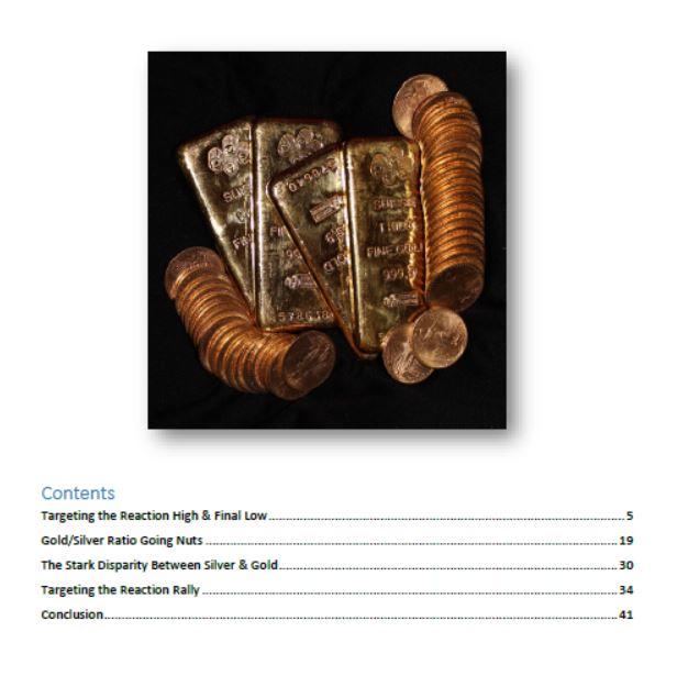 Index Gold Report