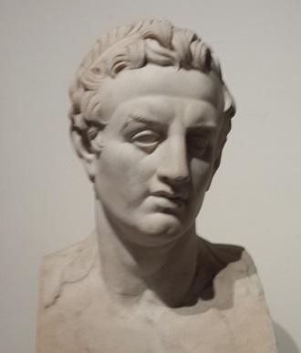 Ptolemy III Euergetes. Bust