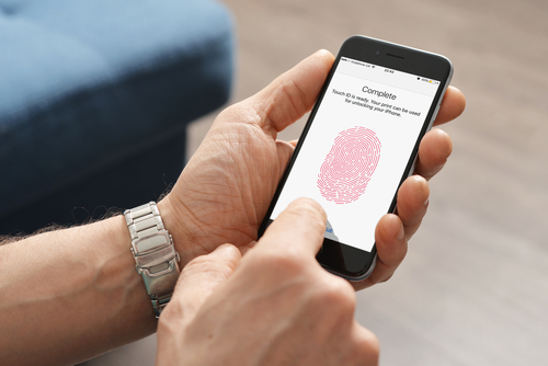 Apple Cell Fingerprint
