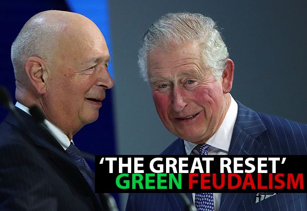 Prince Charles Agrees with Gates – Reduce the World Population thumbnail